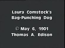File:Laura Comstock's bag-punching dog (1901).webm