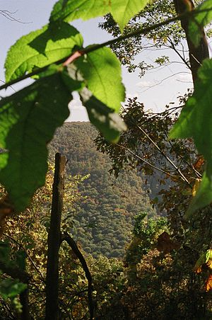 Laurel Ridge State Park - View across the Conemaugh Gorge from the Laurel Ridge Trail.