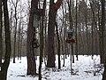 Leśne kapliczki zimą (- link do modelu 3D) - panoramio.jpg