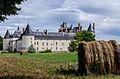 Le Château du Plessis-Bourré.jpg