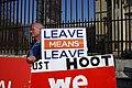 Leave Demonstrator Parliament (46805043404).jpg