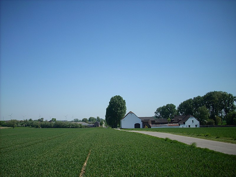 « Chaussée Brunehaut », old roman road, from Bavay to Cologne.