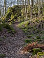Lichtenstein Felsenlabyrinth-20200315-RM-165141.jpg