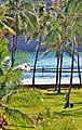 Lihue, Kauai, Hawaii - panoramio (24).jpg
