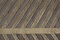 Lines (13821121624).jpg