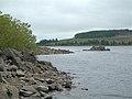 Loch Bradan Shoreline - geograph.org.uk - 533967.jpg