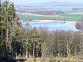 Loch Wood, by Ardwall - geograph.org.uk - 397607.jpg