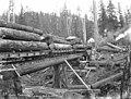 Log train, Apex Timber Company, ca 1925 (KINSEY 30).jpg