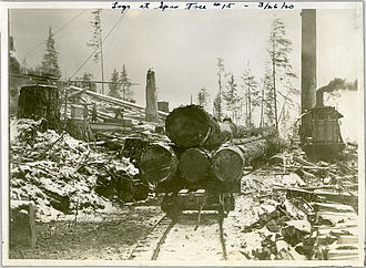 Logging - Log transportation
