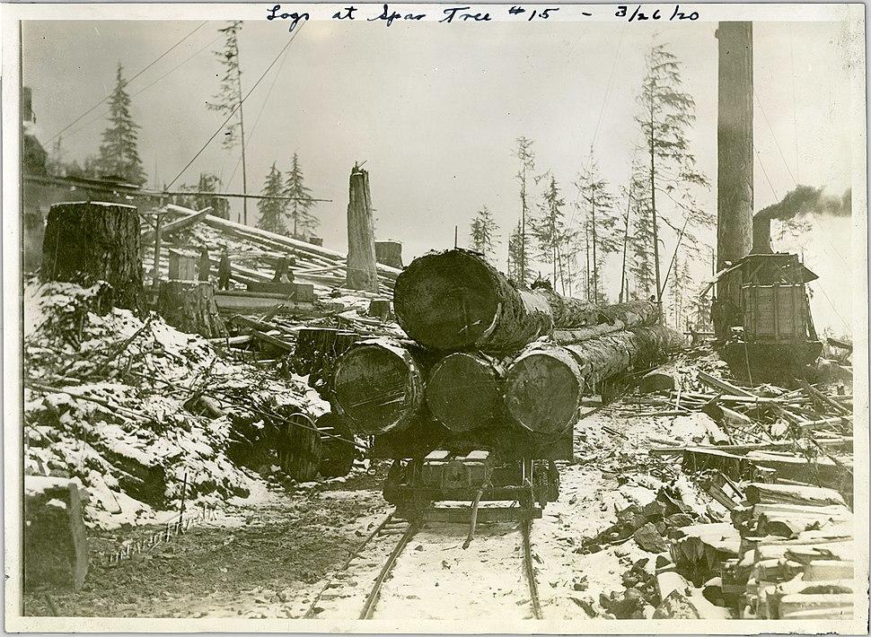 Logging in North Vancouver