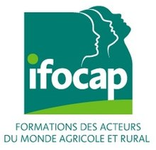 Ifocap wikip dia - Composition bureau association loi 1901 ...