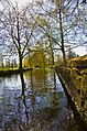London Borough of Sutton Beddington Park 1.jpg