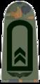 Luftwaffe-141-Oberfeldwebel.png