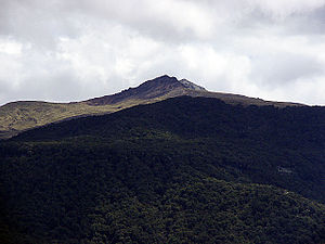 Mount Luxmore - Mount Luxmore showing a covering of beech forest