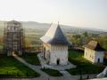 Mănăstirea Dobrovăț.png