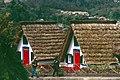 Madeira-50-Riedgedeckte Haeuser-2000-gje.jpg