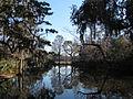 Magnolia Plantation and Gardens - Charleston, South Carolina (8556489184).jpg