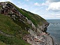 Maidenkirk Brae - geograph.org.uk - 1362739.jpg