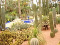 Majorelle garden in Marrakech (2845777492).jpg