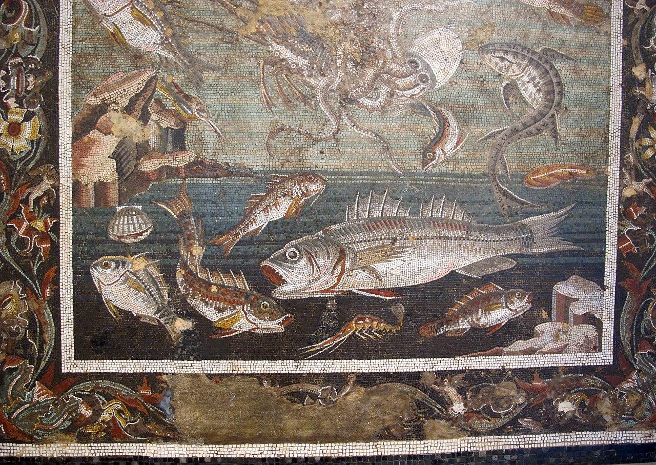 File marina con pesci da casa del fauno a pompei 9997 for Pesci con la e