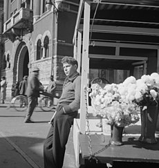 Worksheet. Market Square Knoxville  Wikipedia