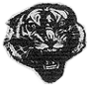 tigres Massillon figure.png