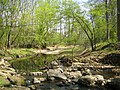 Matthew Henson Trail-4.jpg