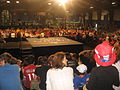 McCainPalin Rally in PA-2008.JPG