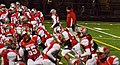 Mentor Cardinals vs. St. Ignatius Wildcats (11043687844).jpg