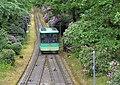 Merkurbahn zur Rhododendronblüte 30.5.2013.jpg