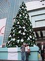 Merry Christmas from Tiffany! (4196426852).jpg