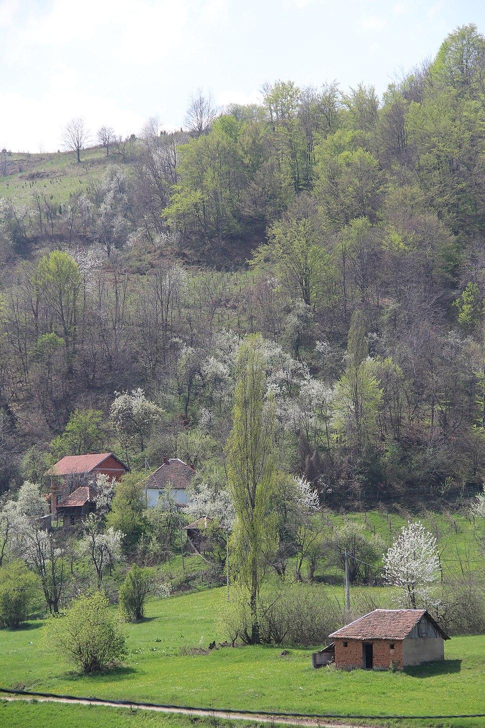 Mijači - opština Valjevo - zapadna Srbija - panorama 13