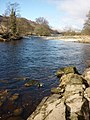 Mill Island, River Wharfe near Appletreewick - geograph.org.uk - 1755819.jpg