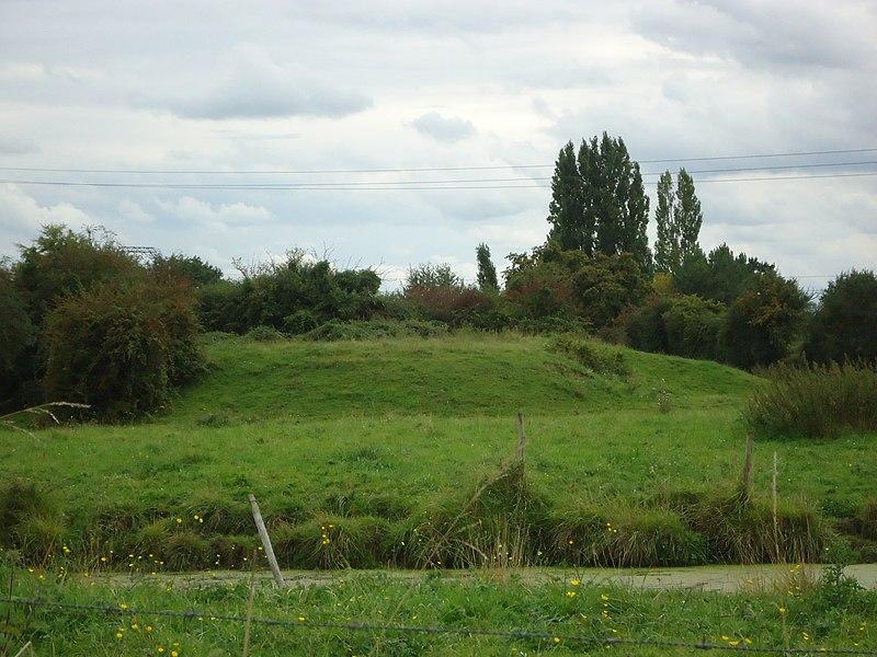 Motte castrale - Vaux - Moncé-en-Belin - Sarthe (72)
