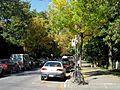 Montréal Mont-Royal 303 (8214080394).jpg