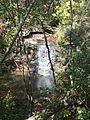 Moss Rock Preserve 2.jpg
