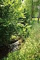 Munkbosbeekvallei 09.jpg