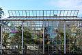 Mythenquai - Sukkulentensammlung 2012-09-28 16-35-41 ShiftN.jpg
