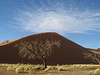 Namib Desert V.jpg