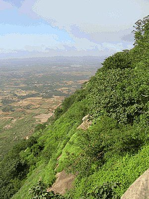 Bangalore geography and environment - The slopes of the Nandi Hills, located 60 km north of Bangalore.