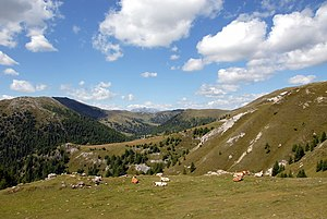 Noric Alps - Nock Mountains