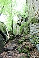 Naturpark Südeifel (Eifel); Teufelsschlucht 13.jpg