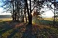 Naturschutzgebiet Unteres Estetal - Sonnenaufgang (1) zwischen Daensen und Nindorf.jpg