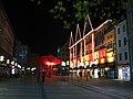 Neuhauser Straße Oberpollinger München Innenstadt Nacht.jpg