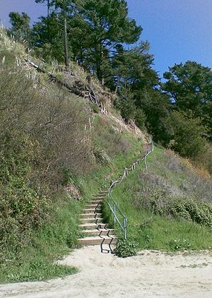 New Brighton State Beach - Stairs to campgrounds