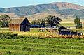New Mown Hay, Nephi, UT 2011 (22652936584).jpg