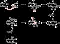 Niementowski-quinoline-mechanism.png