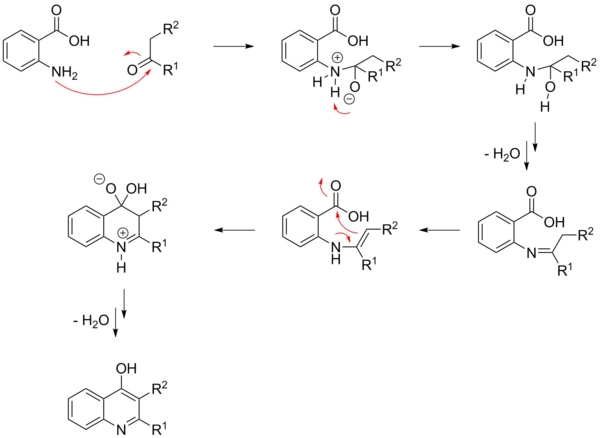 A possible mechanism of the Niementowski quinoline synthesis.