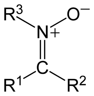 Nitrone - General structure of a nitrone