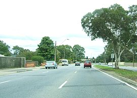 North east road, ridgehaven.jpg